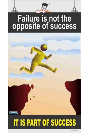 223 - Failure is not the opposite of success